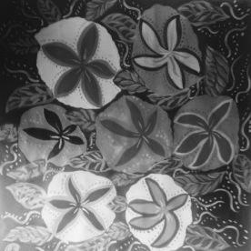 Kembang (Sara Ashencaen-Crabtree)