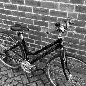 Bike (Tarsem Singh Cooner)