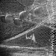 Fish net (Giedre Kvieskiene)