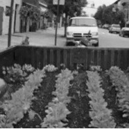 Mobile garden (Egle Celiesiene)