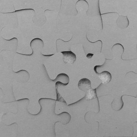 Puzzle (Zaneta Serksniene