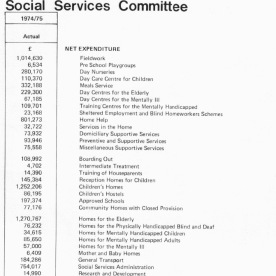 Budget (David Whiting)